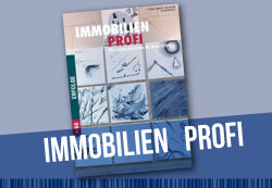"Thumbnail image for Die ""100 Diamonds Studie"" im  IMMOBILIEN-PROFI"